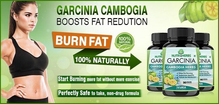 Garcinia Cambogia Efficiently Lose Weight