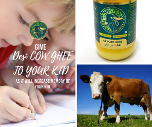 Is your kid facing difficulty in learning math's formula or important dates of history? Give him desi cow ghee