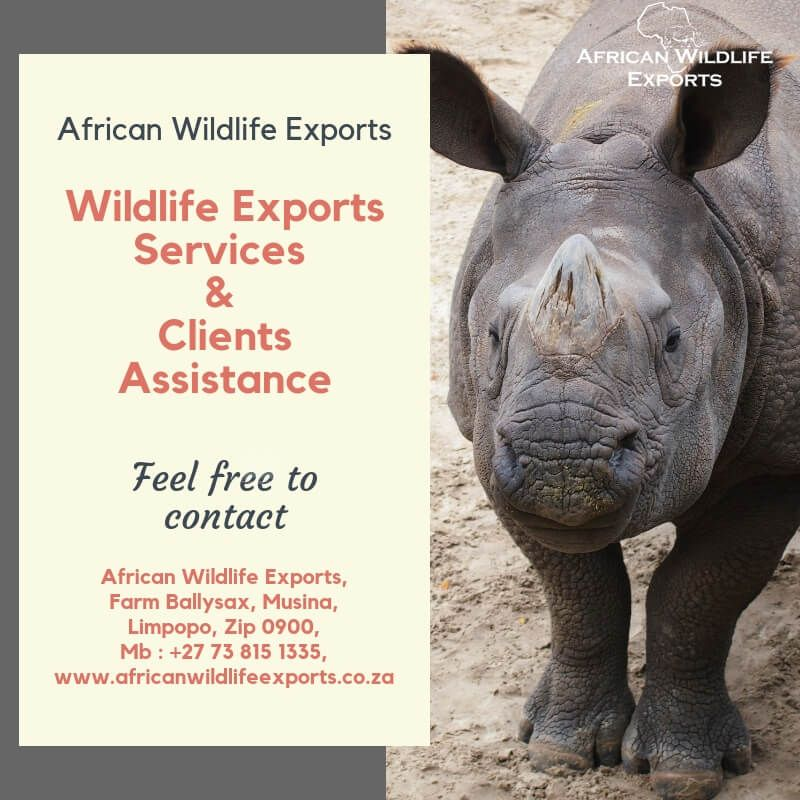 To cover the entire wildlife industry get the wildlife exports services