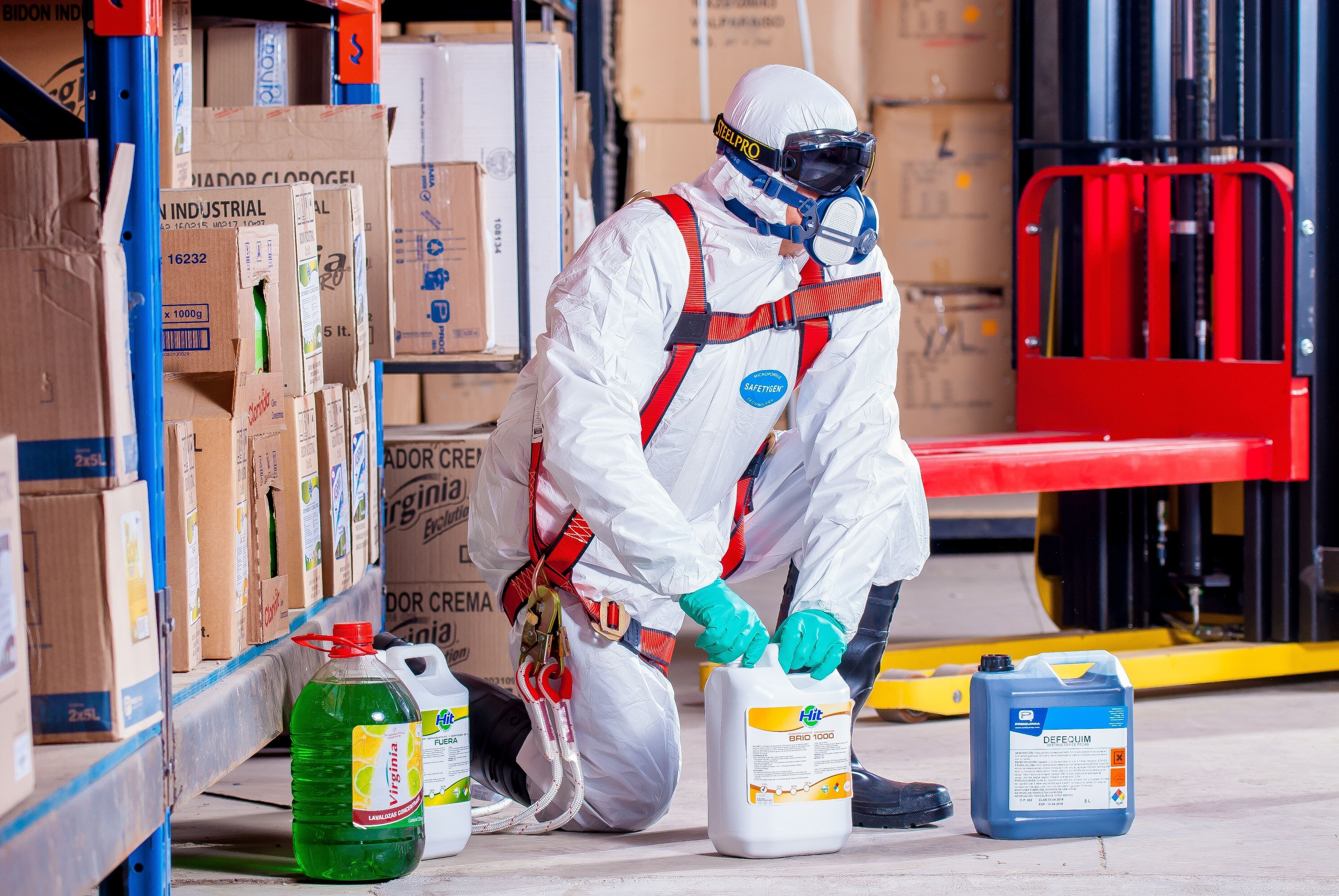 Pest Control Service Provider in Nagpur