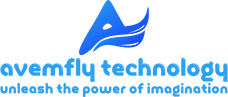 Website Designing Company in Delhi - Avemfly Technology