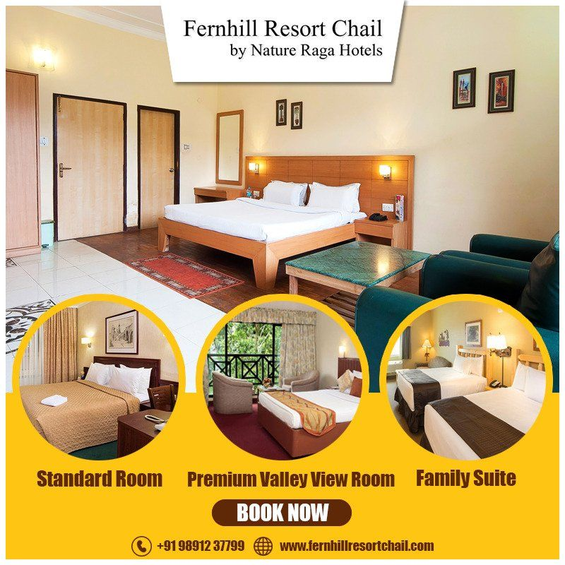 Best Hotel in Chail for Family
