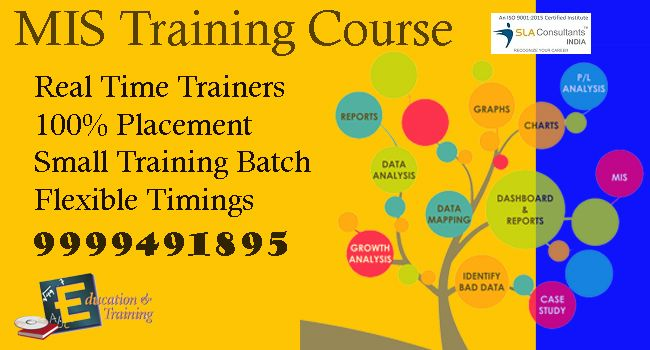 Best MIS Training Institute in Delhi - SLA Consultants India