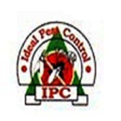 Herbal Pest Control Pune, Best Pest Control In Pune